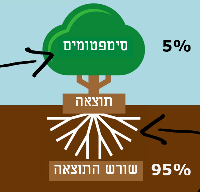 התוצאה מורכבת מסימפטומים (5%) ושורש התוצאה (95%)